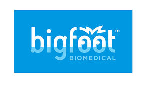 BigfootPrimaryLogoReversed